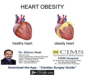 Heart Obesity